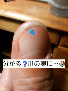68bb4ec6 昨日の鍋パで…: kaya☆rhythm